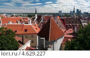 Таллинн. Панорама. Старый город (2012 год). Стоковое фото, фотограф Alioshin.aleksey / Фотобанк Лори