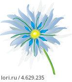 Купить «Рисунок голубого цветка», иллюстрация № 4629235 (c) Михаил Лавренов / Фотобанк Лори