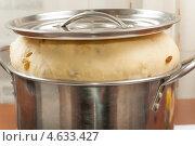 Купить «Тесто в блестящей кастрюле», фото № 4633427, снято 2 мая 2013 г. (c) Сергей Колесников / Фотобанк Лори