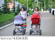 На прогулке (2013 год). Редакционное фото, фотограф Анатолий Уткин / Фотобанк Лори