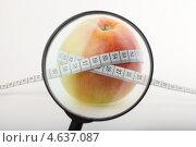 Измеряемое яблоко под лупой. Стоковое фото, фотограф Alexandr Banshikov / Фотобанк Лори