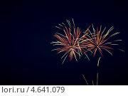 Фейерверк на темном небе. Стоковое фото, фотограф Анастасия Новикова / Фотобанк Лори