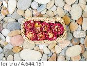 Корзина с сухими розами на морской гальке. Стоковое фото, фотограф Raulin / Фотобанк Лори