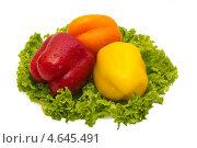 Паприка (Paprika) и салат. Стоковое фото, фотограф Пётр Квашин / Фотобанк Лори