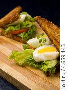 Купить «Свежие горячие бутерброды с яйцом, салатом, огурцом и мягким сыром», фото № 4659143, снято 22 мая 2013 г. (c) Eve Voevoda / Фотобанк Лори