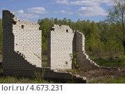Разрушенная кирпичная стена в лесу. Стоковое фото, фотограф Олег Ручьев / Фотобанк Лори