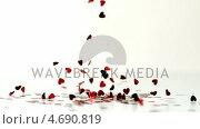 Купить «Heart confettis falling down», видеоролик № 4690819, снято 22 июля 2019 г. (c) Wavebreak Media / Фотобанк Лори