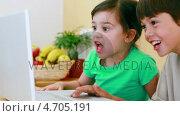 Купить «Happy children looking at a laptop», видеоролик № 4705191, снято 22 июля 2019 г. (c) Wavebreak Media / Фотобанк Лори