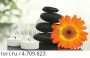 Купить «Black stones, candles and sunflower», видеоролик № 4709823, снято 5 августа 2020 г. (c) Wavebreak Media / Фотобанк Лори