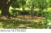 Купить «Athletic couple jogging in a wood», видеоролик № 4710923, снято 5 августа 2020 г. (c) Wavebreak Media / Фотобанк Лори