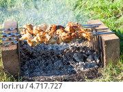 Купить «Приготовление шашлыка на природе», фото № 4717727, снято 16 февраля 2019 г. (c) FotograFF / Фотобанк Лори