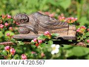 Купить «Спящий Будда в ветвях цветущего кизильника горизонтального», эксклюзивное фото № 4720567, снято 3 июня 2013 г. (c) Наташа Антонова / Фотобанк Лори