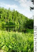 Бирюлёвский дендрарий. Нижний пруд на Бирюлёвском ручье у главного входа в парк. Стоковое фото, фотограф Марат Сабиров / Фотобанк Лори