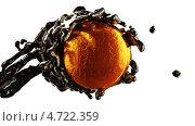 Купить «Нефтяная промышленность: сырая нефть и золотая монета», иллюстрация № 4722359 (c) Арсений Герасименко / Фотобанк Лори