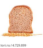 Купить «Кусок чёёрного зернового хлеба и колосок пшеницы», фото № 4729899, снято 10 апреля 2013 г. (c) Литвяк Игорь / Фотобанк Лори