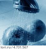Купить «Мытье яблок», фото № 4731567, снято 31 июля 2008 г. (c) Иван Михайлов / Фотобанк Лори