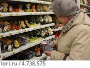 Купить «Женщина рассматривает фигурки животных для сада», фото № 4738575, снято 29 марта 2013 г. (c) Петрова Ольга / Фотобанк Лори