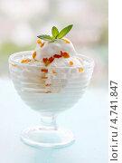 Купить «Мороженое с курагой», фото № 4741847, снято 14 мая 2013 г. (c) Юлия Маливанчук / Фотобанк Лори
