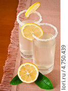 Купить «Два стакана лимонада», фото № 4750439, снято 29 июля 2011 г. (c) Анастасия Мелешкина / Фотобанк Лори