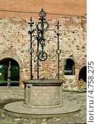 Купить «Колодец Мирского замка», фото № 4758275, снято 6 июня 2013 г. (c) Инна Грязнова / Фотобанк Лори