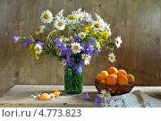 Купить «Натюрморт с букетом полевых цветов и абрикосами», фото № 4773823, снято 19 июня 2013 г. (c) Julia Ovchinnikova / Фотобанк Лори