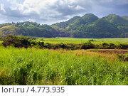 Купить «Ямайка. Тропический пейзаж у подножия горы Нассау.», фото № 4773935, снято 29 октября 2011 г. (c) Куликов Константин / Фотобанк Лори