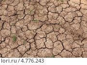 Трещины на сухой земле. Стоковое фото, фотограф Елена Скрипина / Фотобанк Лори