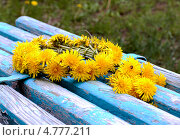 Венок из одуванчиков на скамейке с облезшей краской. Стоковое фото, фотограф Елена Заммоева / Фотобанк Лори