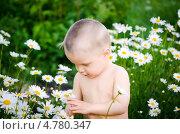 Купить «Маленький ребенок среди ромашек», фото № 4780347, снято 17 июня 2013 г. (c) Насыров Руслан / Фотобанк Лори