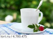 Чашка чая с веточкой малины. Стоковое фото, фотограф Трофимова Мария / Фотобанк Лори