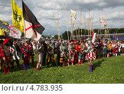 Купить «Фестиваль «Времена и эпохи» в Коломенском», эксклюзивное фото № 4783935, снято 21 июня 2013 г. (c) ФЕДЛОГ / Фотобанк Лори