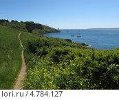 Тропинка у обрыва с видом на бухту, Англия, графство Корнуолл, (Cornwall, UK) (2013 год). Стоковое фото, фотограф Гурова Анна / Фотобанк Лори