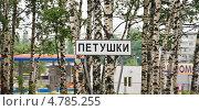 Купить «Дорожный указатель при въезде в город Петушки. Трасса М7», эксклюзивное фото № 4785255, снято 24 мая 2013 г. (c) Алёшина Оксана / Фотобанк Лори