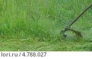 Купить «Кошение травы триммером», видеоролик № 4788027, снято 23 июня 2013 г. (c) Андрей Некрасов / Фотобанк Лори