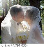 Купить «Жених и невеста, поцелуй», фото № 4791035, снято 10 мая 2013 г. (c) ElenArt / Фотобанк Лори