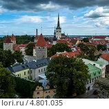 Купить «Крыши Таллина с видом на церковь Олевисте и крепостные башни», фото № 4801035, снято 21 августа 2010 г. (c) Тимур Ахмадулин / Фотобанк Лори