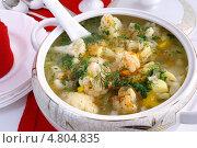 Купить «Суп из цветной капусты на курином бульоне», эксклюзивное фото № 4804835, снято 30 апреля 2013 г. (c) Blekcat / Фотобанк Лори