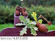 Пинетки из дерева. Стоковое фото, фотограф Ольга Шабалкина / Фотобанк Лори