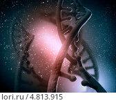 Купить «Современная биология и генетика. Коллаж с двойной нитью ДНК», фото № 4813915, снято 22 октября 2019 г. (c) Sergey Nivens / Фотобанк Лори