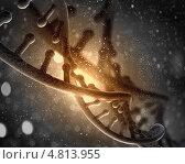 Купить «Двойная спираль молекулы ДНК», фото № 4813955, снято 19 февраля 2020 г. (c) Sergey Nivens / Фотобанк Лори