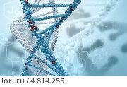 Купить «Биология и генетика. Коллаж с молекулой ДНК», фото № 4814255, снято 19 февраля 2020 г. (c) Sergey Nivens / Фотобанк Лори