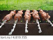 Купить «Шашлык на мангале», эксклюзивное фото № 4819155, снято 1 июля 2013 г. (c) Юрий Морозов / Фотобанк Лори