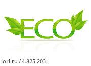 Купить «Надпись ECO с зелеными листьями», фото № 4825203, снято 12 ноября 2019 г. (c) Syda Productions / Фотобанк Лори