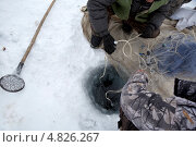 Купить «Мужчины принимают участие в зимней рыбалке сетями на озере», эксклюзивное фото № 4826267, снято 13 марта 2013 г. (c) Николай Винокуров / Фотобанк Лори