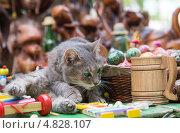 Серый кот с зелеными глазами на фоне сувениров. Стоковое фото, фотограф Александров Алексей / Фотобанк Лори