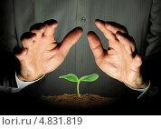 Мужчина держит руки над зелёным ростком. Стоковое фото, фотограф Алексей Кириллов / Фотобанк Лори