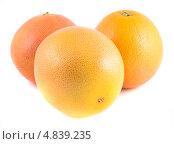 Купить «Три грейпфрута. Изолированно на белом фоне», фото № 4839235, снято 27 июня 2013 г. (c) Литвяк Игорь / Фотобанк Лори