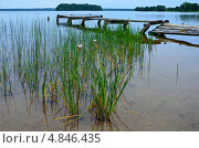 Купить «Голубое Озеро Плателяй в Литве», фото № 4846435, снято 2 июля 2013 г. (c) Елена Галачьянц / Фотобанк Лори