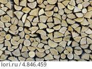Поленница дров. Стоковое фото, фотограф Александр Тесевич / Фотобанк Лори