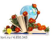 С днем учителя! Глобус и книга с цветами. Стоковое фото, фотограф Peredniankina / Фотобанк Лори